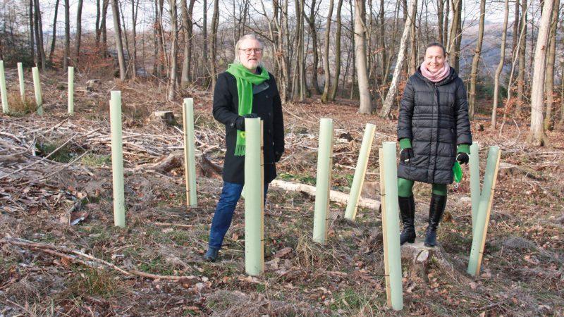 Wald Sinzig: Stefani Jürries und Ralf Urban