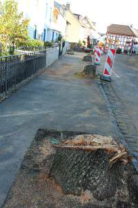 Der Ahrweiler Mühlenteich nach den Baumaßnahmen...